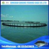 Плавая клетка быть фермером рыб с устанавливать обслуживание