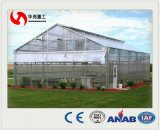 Feuille de polycarbonate Green House pour profilé en aluminium Vegebable commercial