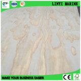 Irradiar la base de Popar del grado de la madera contrachapada BB/CC del pino para el mercado de México