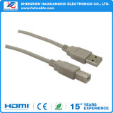 Shenzhen Good Quality Am to Bm Câble USB magnétique