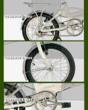 """16 """" En15194 Vouwbare Ebike (lweb-T1601C)"""