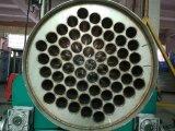 Generatore dell'ozono da 600 grammi per il trattamento di acqua di scarico dell'ospedale