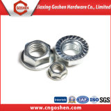 DIN6923 M10 Galvanized Flange Nuts