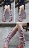 Moda feminina Lady Knit Button Boot Legwarmer meias para venda