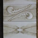 Unité centrale décorative de panneau de mur intérieur de polyuréthane moulant 3D la plaque Hn-A018/A019