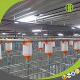 Système alimentant de porc de ferme de matériel de disque en gros de chaîne