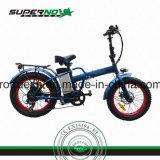 후방 모터를 가진 뚱뚱한 타이어 전기 자전거