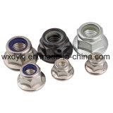 Noix de bride de l'acier inoxydable 316 DIN 6923