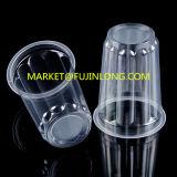 Precio plástico de la máquina de Thermoforming de la taza