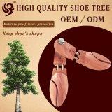 Gute Qualitätsharter hölzerner Schuh-Baum