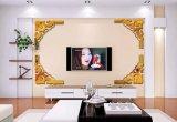 De van achtergrond TV AcrylSpiegel van de Decoratie