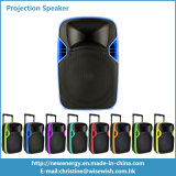 12 pulgadas de FAVORABLE altavoz activo audio plástico de Bluetooth con el proyector