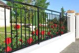 Rete fissa ornamentale rivestita della polvere calda di vendite per il giardino, piattaforma, obbligazione