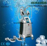 Cellulites initiales de la Chine d'homologation de la CE dissolvant le corps de Cryolipolysis amincissant la machine