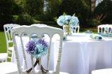 結婚式または党のための卸し売りプラスチック館の椅子