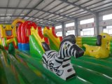Durable Inflatable Bouncer Business Inflável Jumping Castle (HL-103)