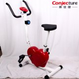 Máquina de interior de la bicicleta del ejercicio físico del amaestrador de la aptitud de la bici en forma de corazón de Exericse