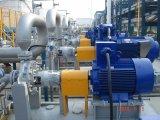 L'industrie pétrochimique de la pompe de processus