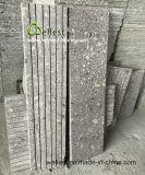 Azzurro di G949 Dcean/mattonelle granito dei biscotti per il rivestimento pavimento/della parete