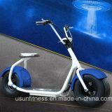 2018 Gorduras Scooter eléctrico em duas rodas de pneus com Bluetooth