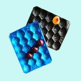 Umweltfreundliches pp. Plastiktellersegment der China-Lieferant Customed Größen-verschiedenen Wegwerffarben-für Frucht