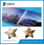 Offset Printing Hard Cover Catalogue Service d'impression