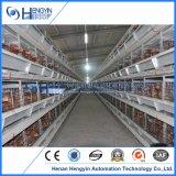 HandelsGeflügelfarm-Geräten-Huhn-Batterie-Korb
