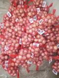Shallot нового урожая при максимум ехпортируя качество 2017