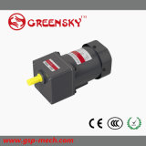 60W Reversible AC Motor met Ce