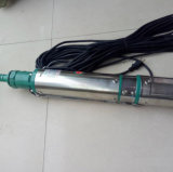 Angeschaltene Bewässerung-Wasser-Pumpen-angeschaltene Wasser-Solarsolarpumpe