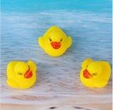 新しい流行の流行のゴムリングのアヒル水ペットおもちゃ