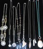 De Vrouwen van de manier namen Gouden Hart toe & parelt het Zilver de Halsband van de Tegenhanger