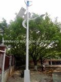 Eixo Vertical Gerador eólico com sistema de luz de rua (200W-5KW)