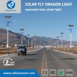 Via solare dell'indicatore luminoso del giardino del prodotto LED