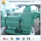 Pompe à eau autocollante électrique Centrifuge Horizontal Centrale Zx