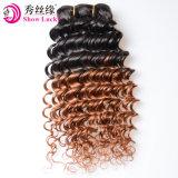 Inslag van het Menselijke Haar van de Golf van het Haar 1b/30 Ombre van de Levering van de Fabriek van China de Originele Diepe Ruwe Maleise