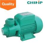 Schimpanse Qb60 0.5 HP-kleine Bewässerung-elektrische Wasser-Spray-Pumpe