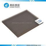 Panneau de plastique en bronze de Sun de PC de polycarbonate de Jumeau-Mur