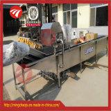 Ligne de lavage surfante machine de fruit végétal de la Chine de nettoyage