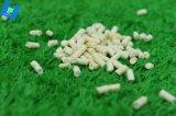 Wc Product-Corn Litter-Flushable cat cat, macizo, fácil boca