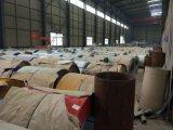 SGCC Farbe beschichtete Stahlring-Fabrik