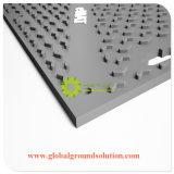 Witte Color/100% Zuivere HDPE Materiële Bladen/Populair in Plaat van de Weg van Europa de Tijdelijke