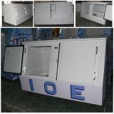 Escaninho de armazenamento frio Vt-400 do gelo do especialista das técnicas mercantís do gelo do sistema da parede