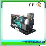 De Reeks van de Generator van het Steenkolengas van Ce en van ISO/Van het Gas van de Producent (100kw)