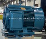 Трехфазный мотор постоянного магнита наивысшей мощности