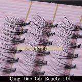 Uitbreidingen van de Wholesale Costom Individual de Koreaanse Valse Wimper van de Zweep van Lili Beauty met de Verpakking van Doos