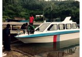 Aqualand 12 person Water taxi/pass-narrow Boat/House Cabin Boat (760)