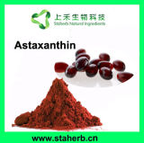 Astaxanthin van het Uittreksel van Pluvialis van Haematococcus Astaxanthin Poeder