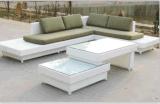 Напольный стул -2 салона отдыха мебели ротанга