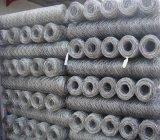 Rete metallica esagonale della rete metallica della rete metallica di Hexgaonal
